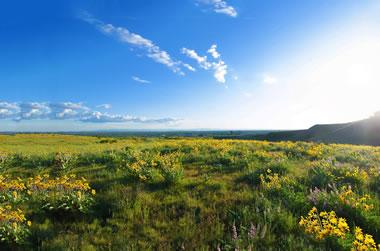 Boise Idaho foothills